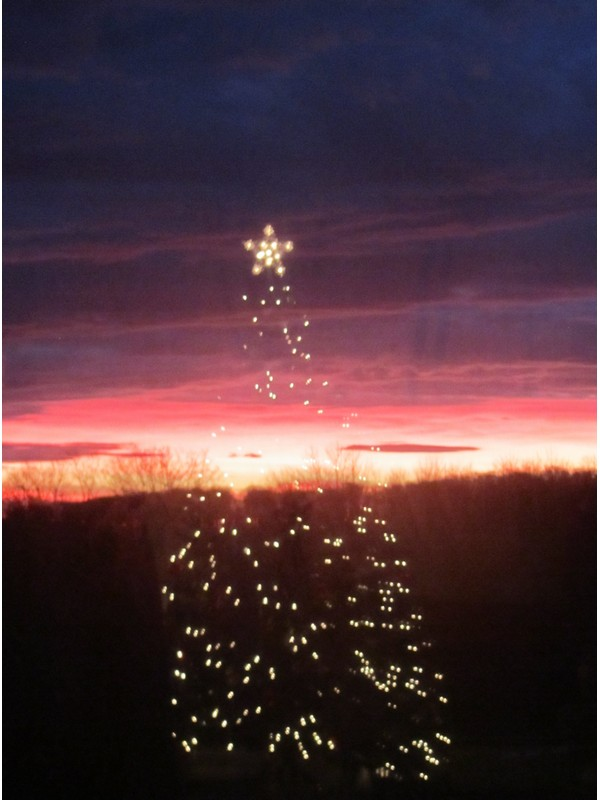 Dawn of Christmas Season