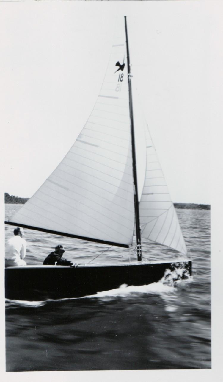 Robin 750x1300